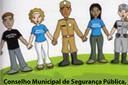 Câmara Aprova Projeto de Lei que cria Conselho Municipal de Segurança Pública.